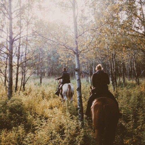 . . ***** : Celui qui monte à cheval . .