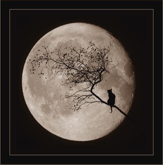 Au clair de la lune,