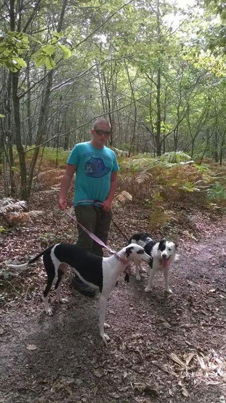 Petite rando avec mes chien
