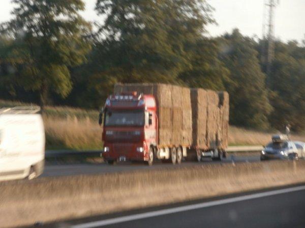 Daf XF 105 Mega Space Cab camion remorque plateau de paille des transports Nijssen