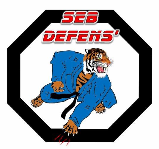 Blog de Seb Defens'