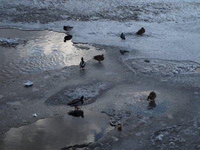 La Neva: Le coeur de la ville