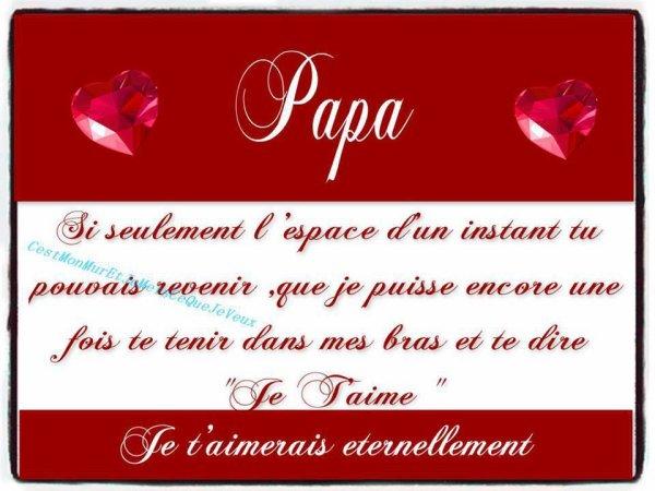 236 Joyeux Anniversaire Papa Veronique