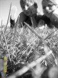 Photo de Alexyiiia