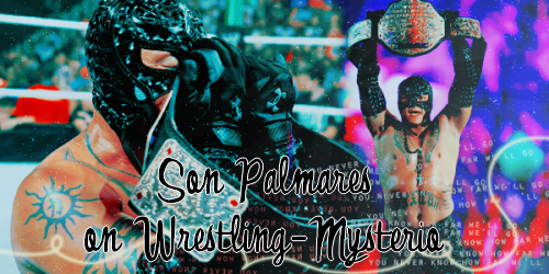 >> Son Palmarès on Wrestling-Mysterio <<