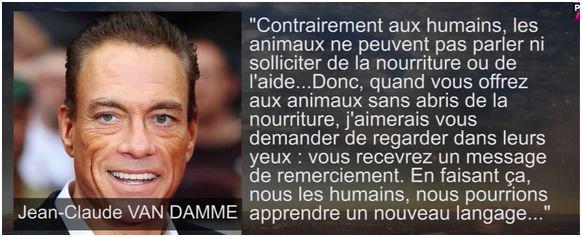 Non à la fourrure! JCVD soutient l'association Belge de défense des animaux ♥