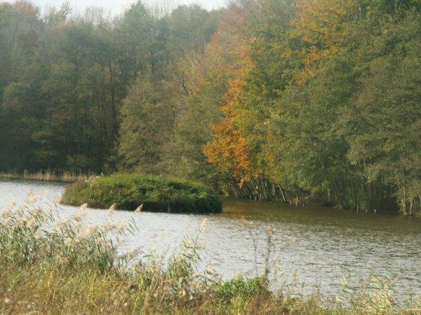 les couleurs de l automne .