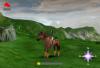 mission-equitation-57