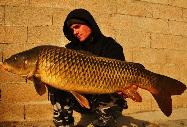 !..........Commune de Seine..........!