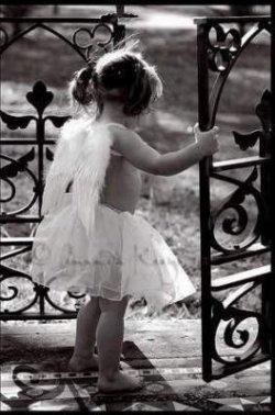 Cupidon est un sale con ` !  »-(¯'v'¯)-»