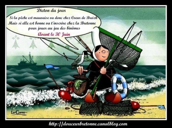 Jeu des binômes chez Coeur de Breizh...