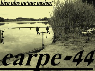 carpe-44