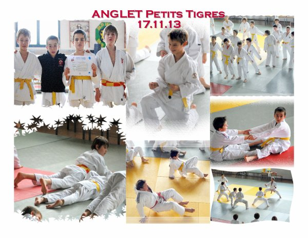 """ANGLET """"Petits Tigres"""" 17.11.13"""