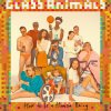 GLASS ANIMALS - how to be a human being (aout 2016)
