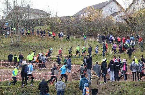 http://www.bienpublic.com/sport-local/2017/11/26/saulieu-un-millier-de-coureurs-pour-la-performance-et-le-sapin