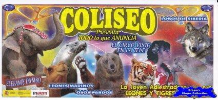 Flyer du Circo Coliseo-2014 (n°1092)