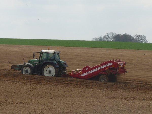 Dans les champs 2017 plantation de pommes de terre