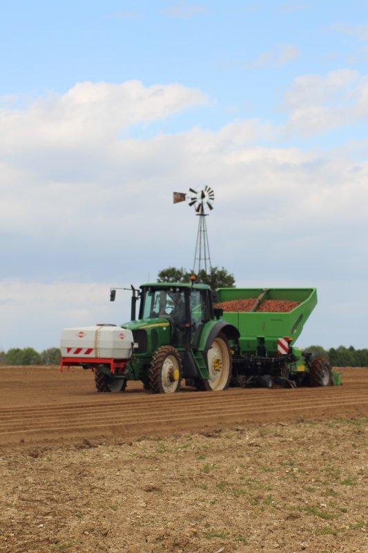Plantation de pommes de terre, chantier N°2
