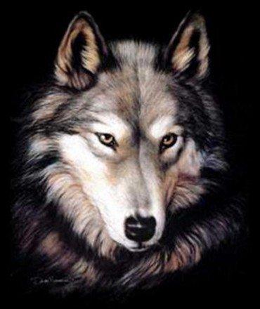 commu loup