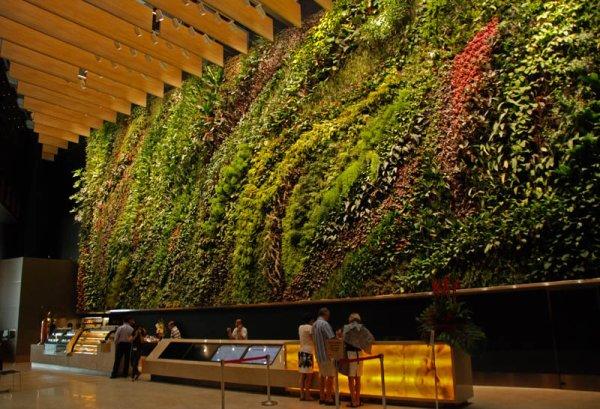... Garden Living Wall Garden