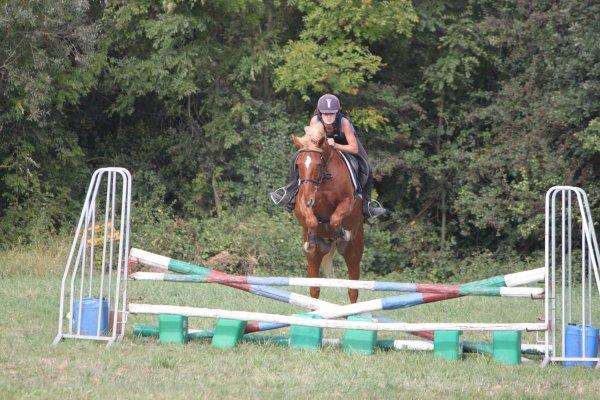 Faites du cheval un compagnon et non un esclave, vous verrez quel formidable ami extraordinaire il est. ♥
