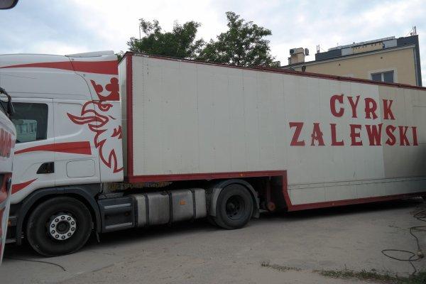 CYRK ZALEWSKI 2018 CONVOI