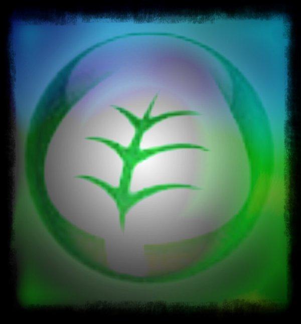 Type Plante !!!