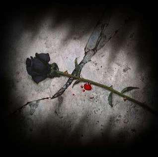 L Amour Noir Hard Rock