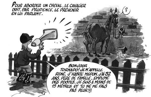 comment aborder un cheval