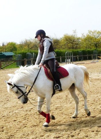 Le souffle du bonheur est entre les oreilles d'un cheval.
