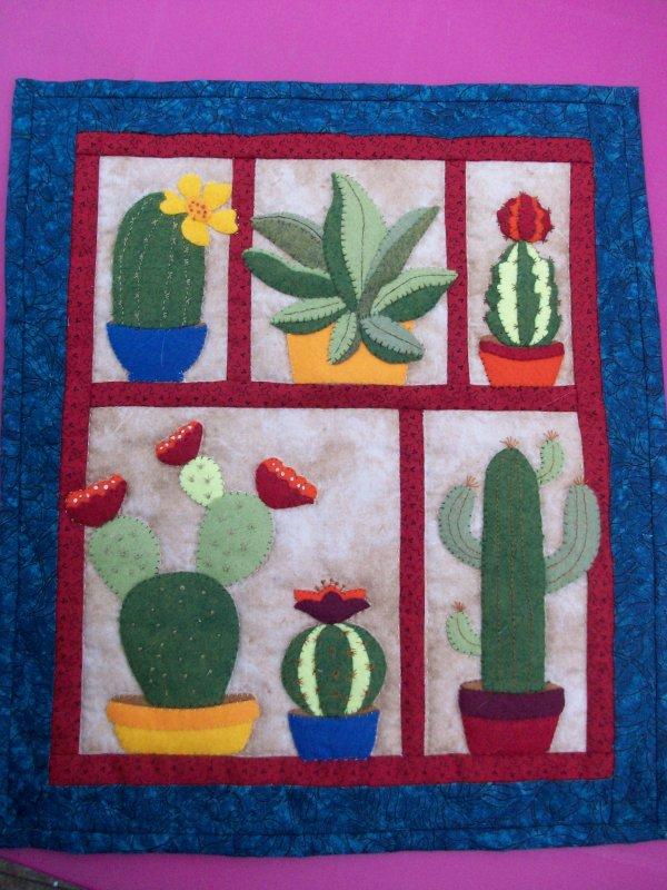 des cactus en hiver