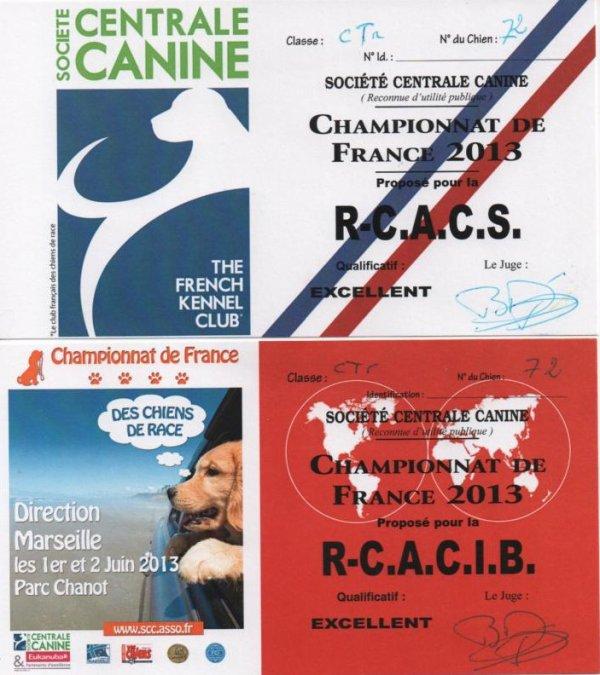 02 juin 2013 - Championnat de France de Beauté à Marseille