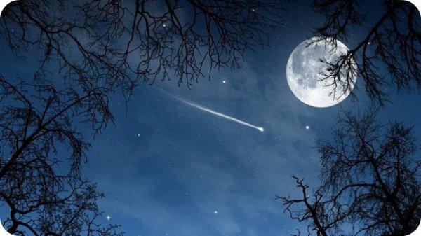 bonne nuit doux réves