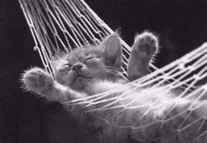 Je vous souhaite à tous une bonne nuit pleine de beaux rêves !