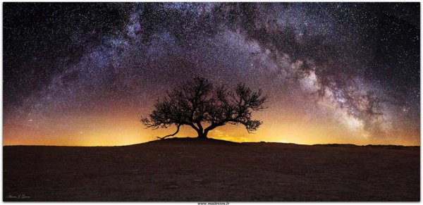 Douce nuit pleine d'étoiles…