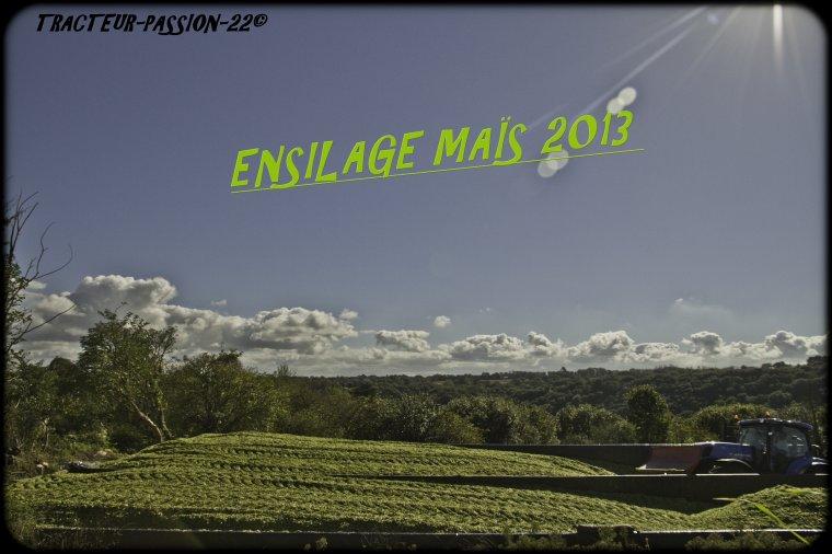 Ensilage Maïs 2013