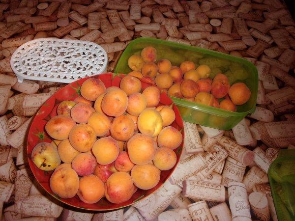 la nature est genéreuse avec nous cette année, 11 cageots d'abricots ramassés en soirée afin de gagner en vitesse l'orage et la tempête qui n'auraient pas épargné la récolte !