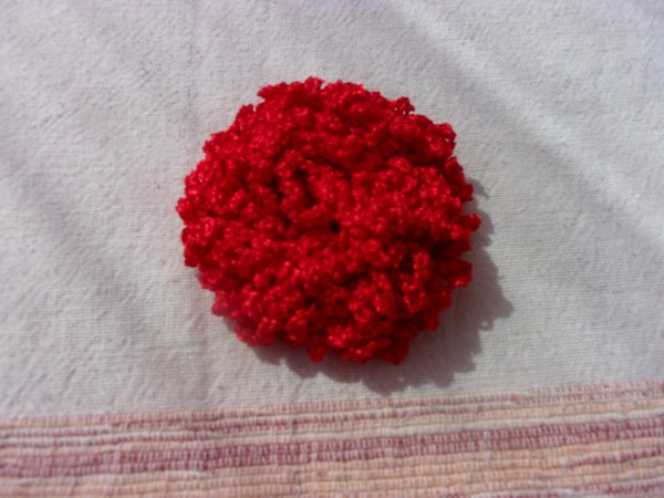 apres une longue absence , j'ai retrouvé avec plaisir ma maison, quelques fleurs réalisées pendant tout ce temps, car j'avais emporté de la laine et des crochets avec moi