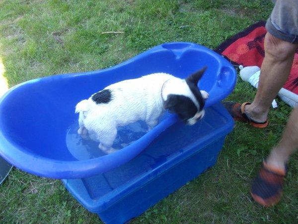 premier juin , premier bain!  nous avons bien rigolé!!!