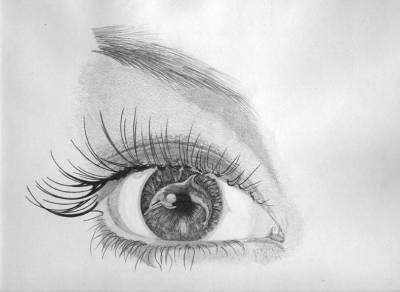 un oeil noir et blanc avec un dauphin dans la pupille oeildelynx. Black Bedroom Furniture Sets. Home Design Ideas