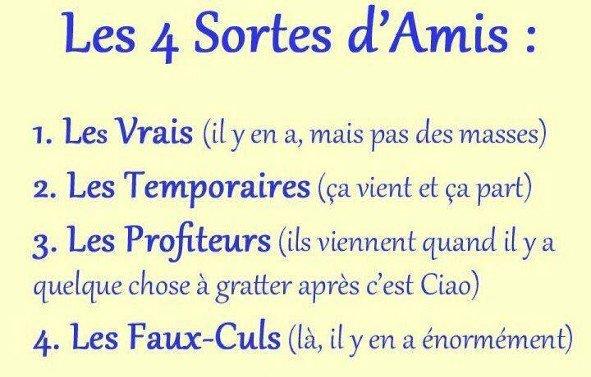 Les 4 Sortes d'Ami(e)s