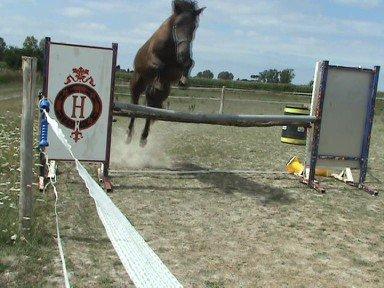 Ses premiers sauts : Aout 2010