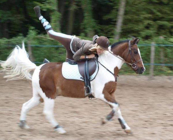 ~ Pony-Games ~
