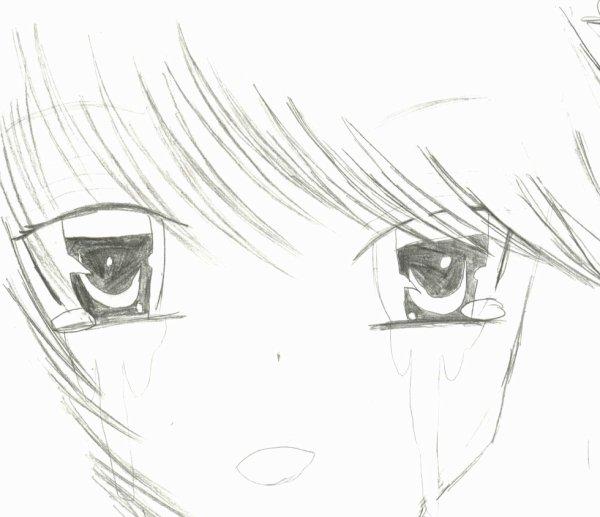 dessin5