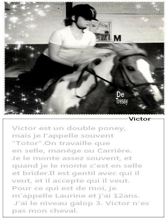 X-Dream-St-Georges-X
