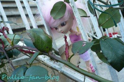 Sortie dans le jardin (5)