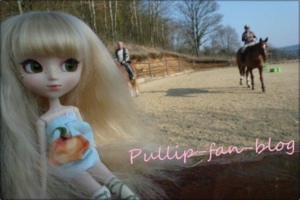 Sakura et les chevaux