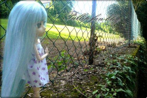 Louna & Sunshany dans le jardin ♥