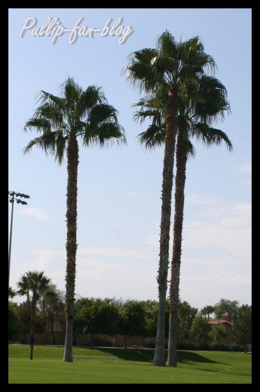Soccer parc de Palm Desert <3