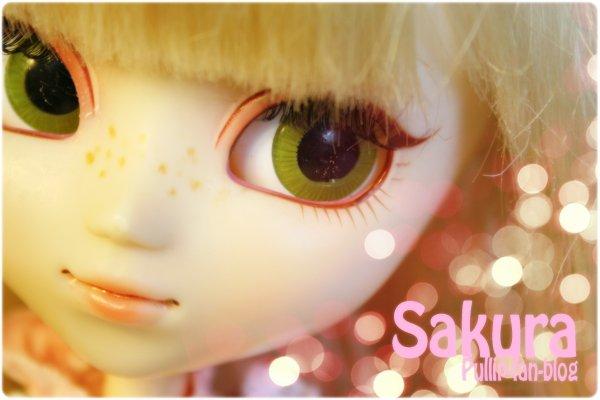 Sakura ♥